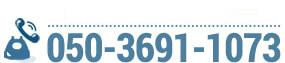 050-3691-1073